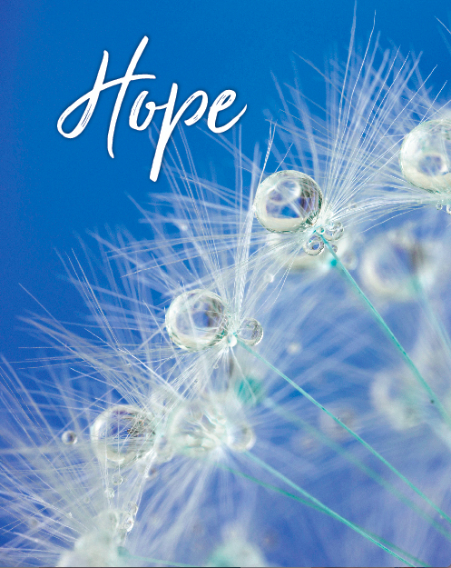 Hope Cover Front Only